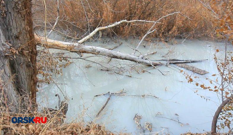 В реке Елшанка нашли аммоний
