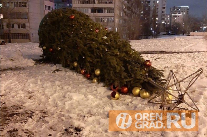 В Оренбурге на проспекте Гагарина упала елка