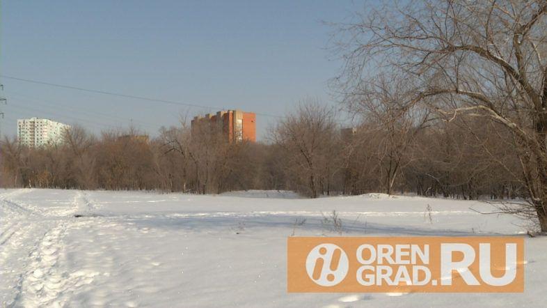 В Оренбурге парк 50-летия ВЛКСМ хотят застроить жилыми домами