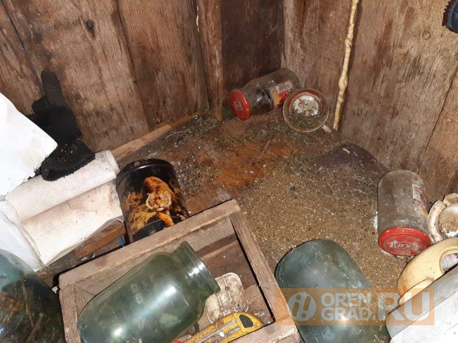 У жителя Саракташа нашли полкило наркотиков