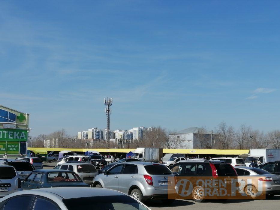 Оренбуржцам не сидится на карантине дома