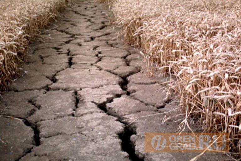 Росприроднадзор будет разбираться с пересохшей рекой Черная в Краснохолме