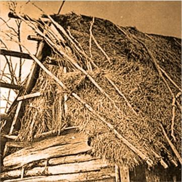 Кражи картошки и зерна. Дела, которые рассматривали оренбургские суды в годы войны
