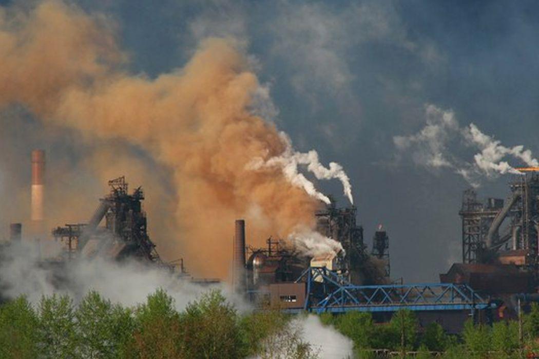 Политик Олег Наумов: «В природоохранной работе у нас больше разговоров, чем дела»