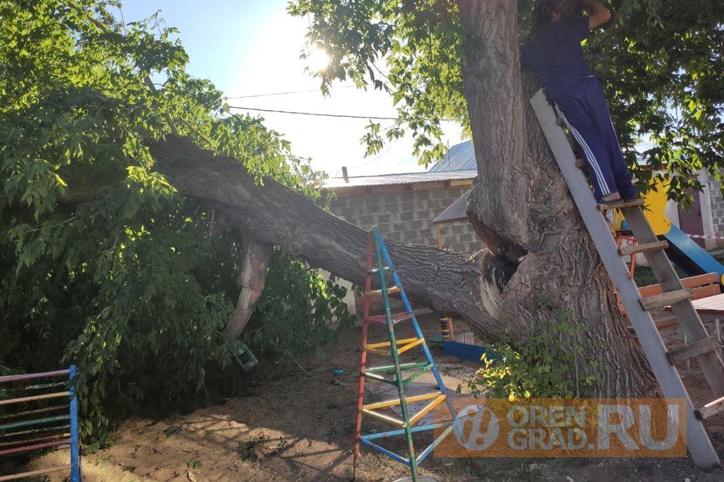 В поселке им.Куйбышева дерево упало на детскую площадку