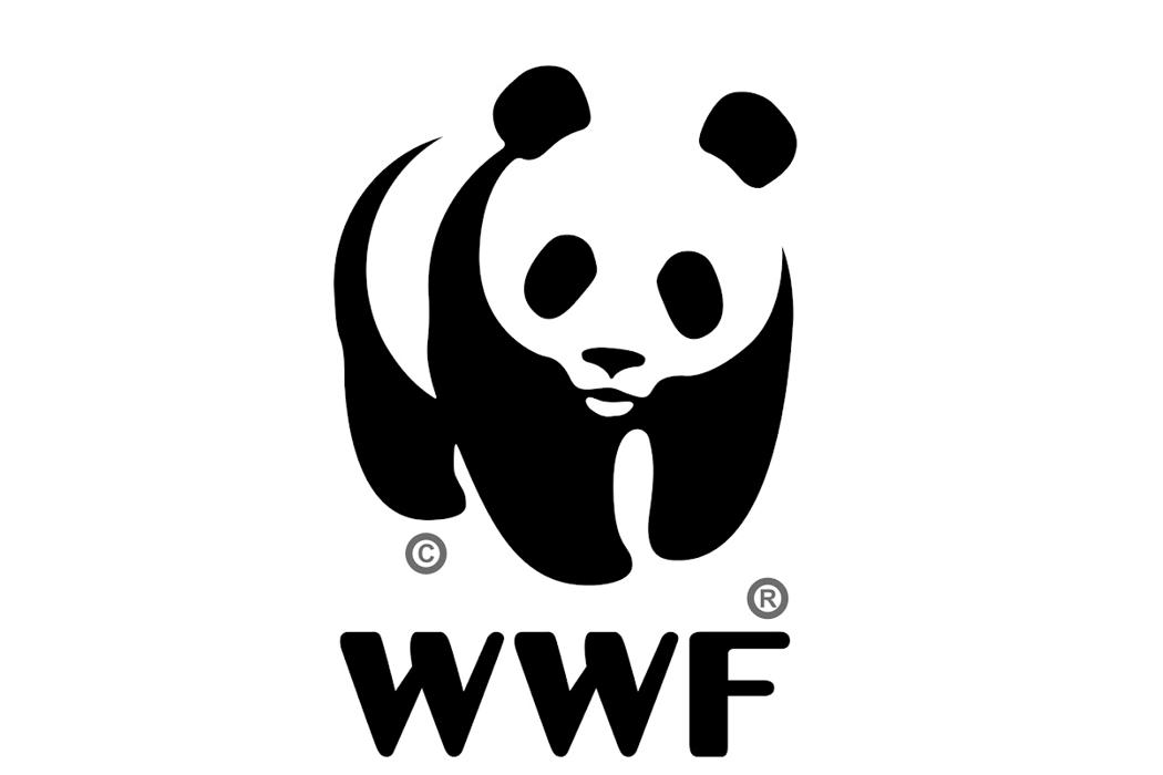 Теракт в США, русская Аляска, Всемирный фонд дикой природы и Всероссийский день трезвости.