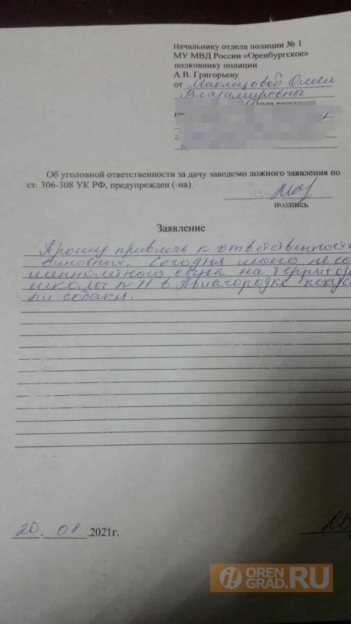 В Оренбурге на территории школы ребенка покусала бродячая собака
