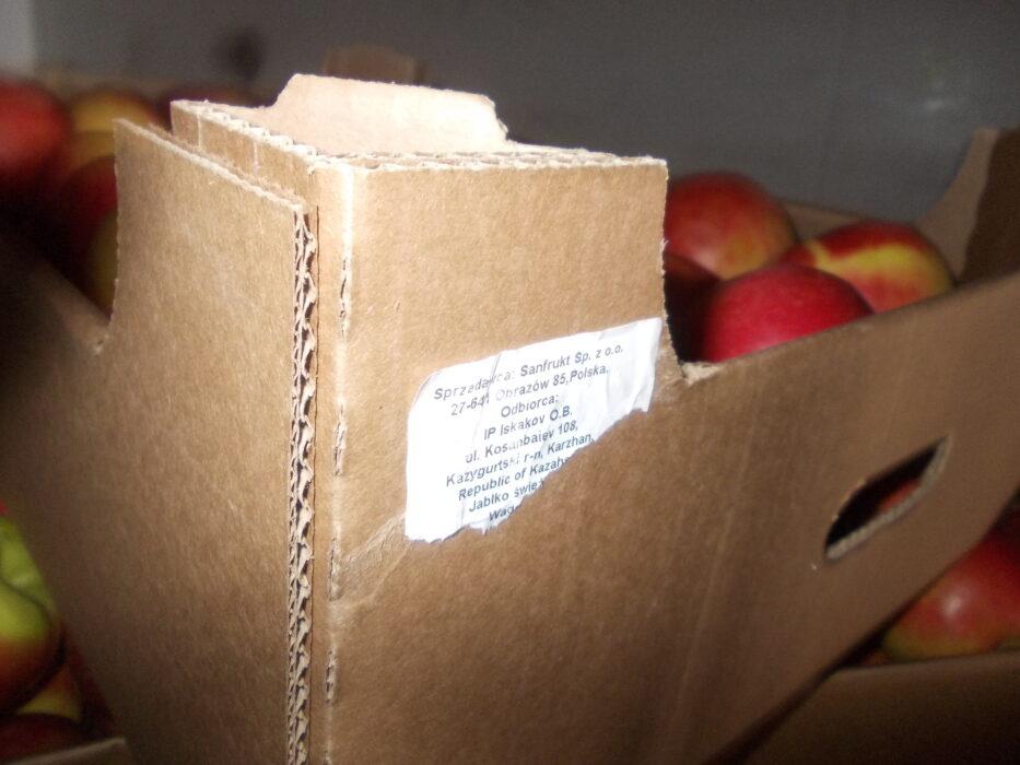 В Оренбуржье уничтожили 21 тонну польских яблок