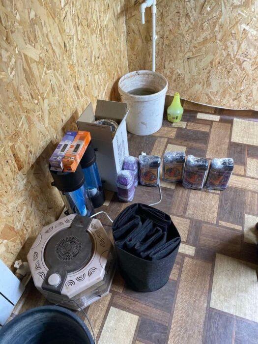 Оренбургские полицейские ликвидировали теплицу с коноплей