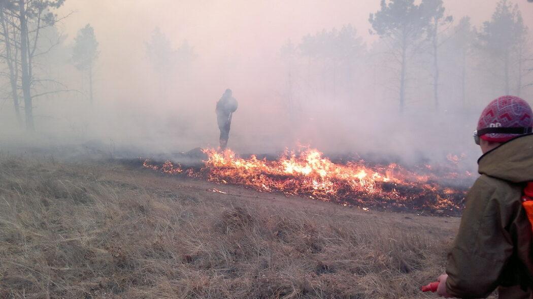 За минувшие сутки в Бузулукском бору сгорело более 1 гектара леса