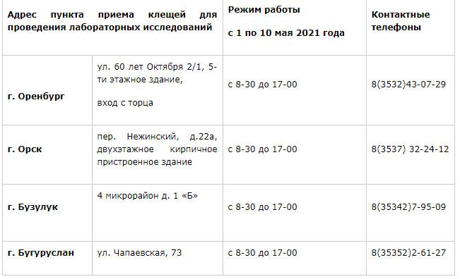 За исследование клещей оренбуржцам придется заплатить