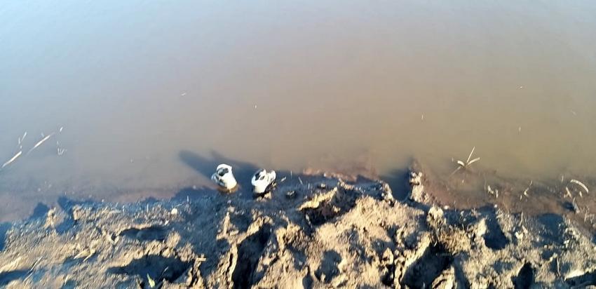 Оренбургский следком расследует обстоятельства гибели детей в пруду Октябрьского района