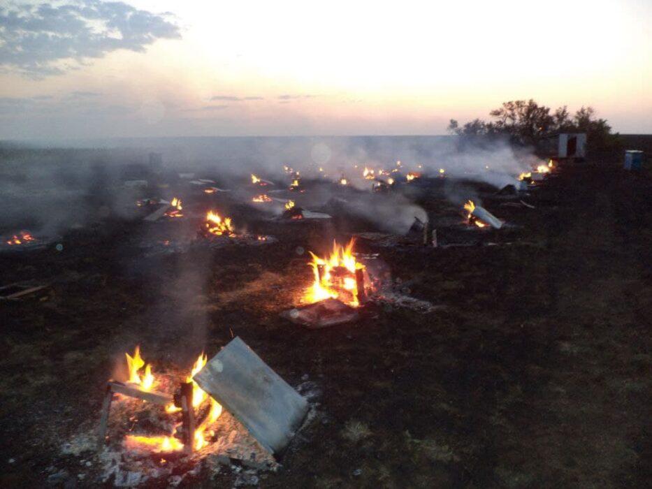 В Октябрьском районе заживо сгорели пчелы