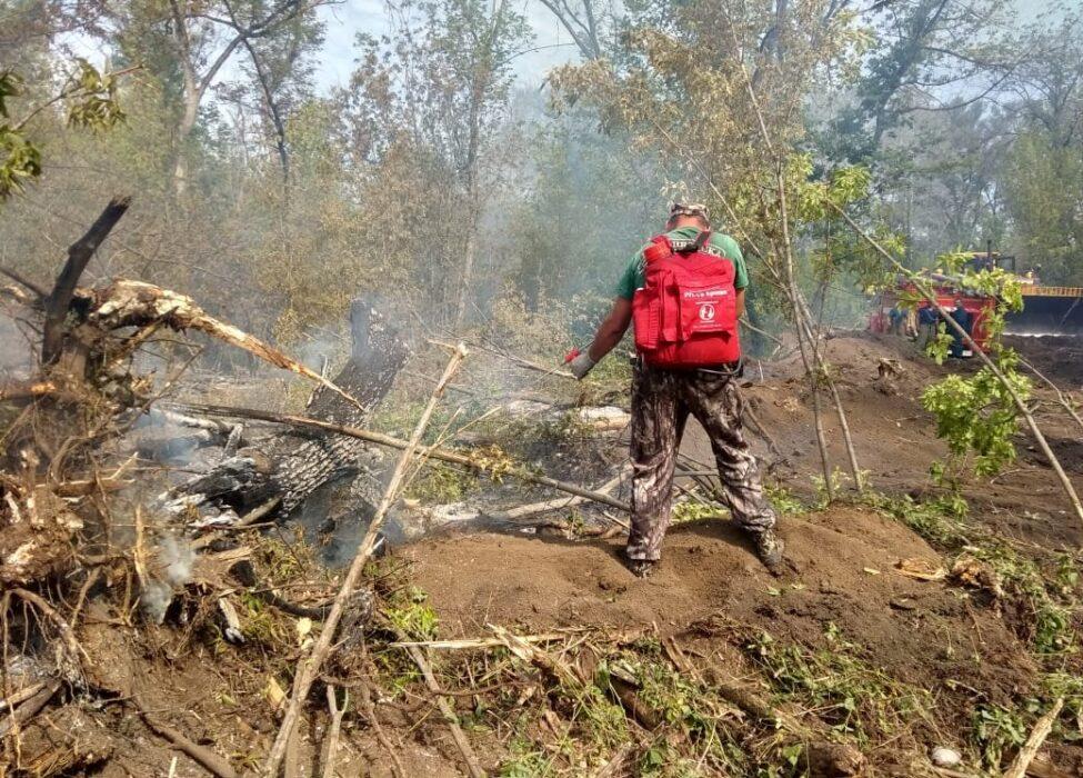 В районе села имени 9 Января потушены крупные очаги пожара