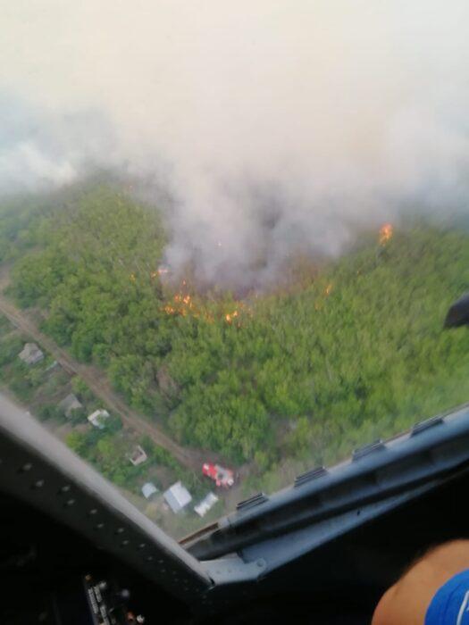 В Оренбурге продолжается ликвидация пожара в «Протопоповской роще»